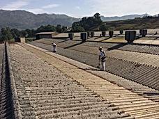 mantenimiento y limpieza de canalones, pesebrones en tejados de naves industriales en torrelavega santander y cercanías.