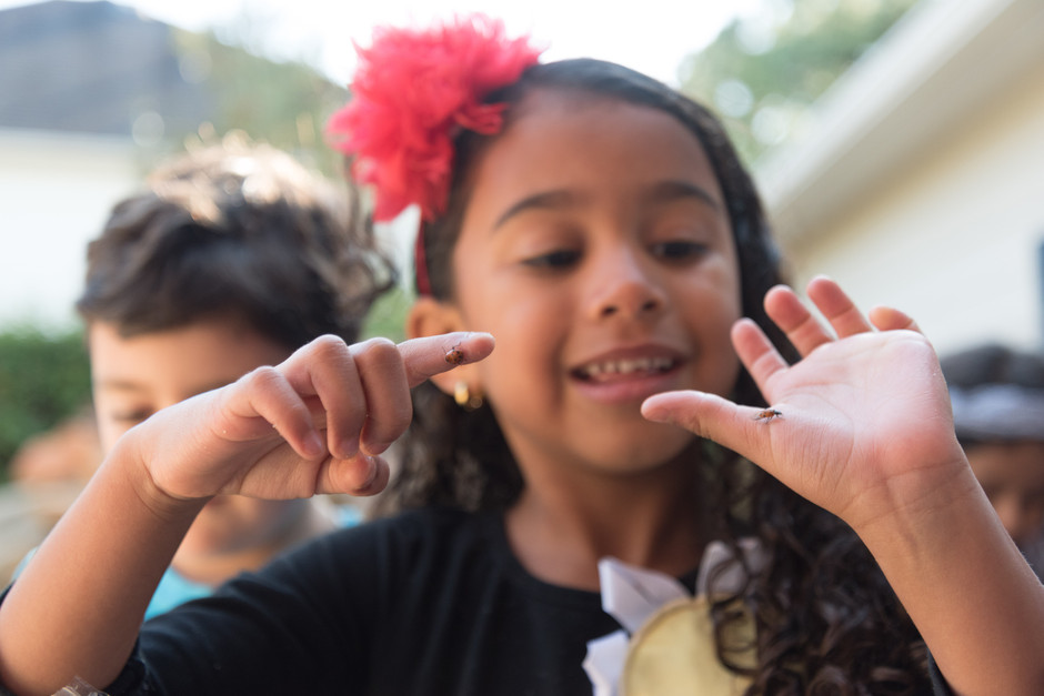 Children learning about bugs in the garden during an event with Ready to Grow Gardens.