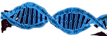 dna_edited.png