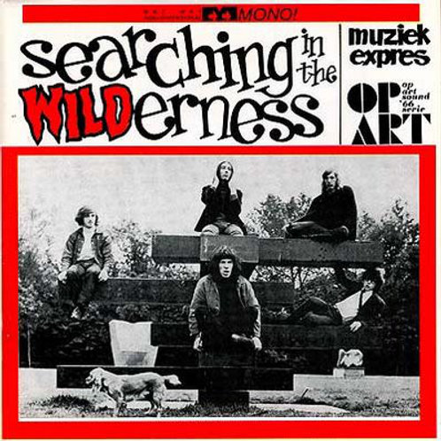 Various–Searching In The Wilderness (unofficial) LP
