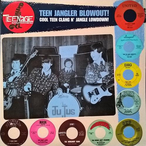 "V/A ""Teen Jangler Blowout!"" (Teenage Shutdown/Crypt) LP"