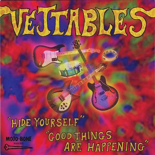 The Vejtables–Hide Yourself 45