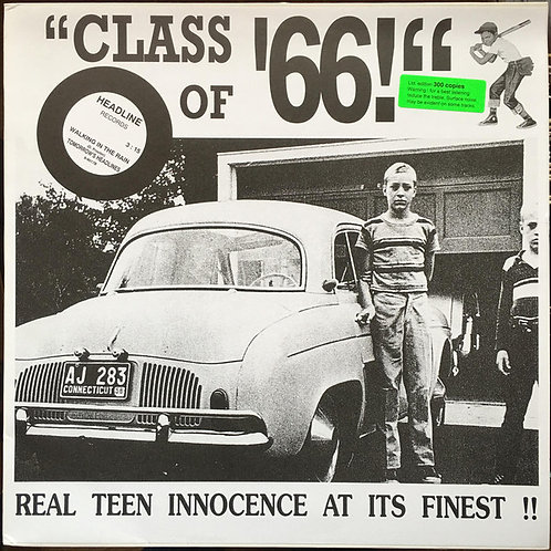 Various–Class Of '66! LP (Ex/Ex, played once)