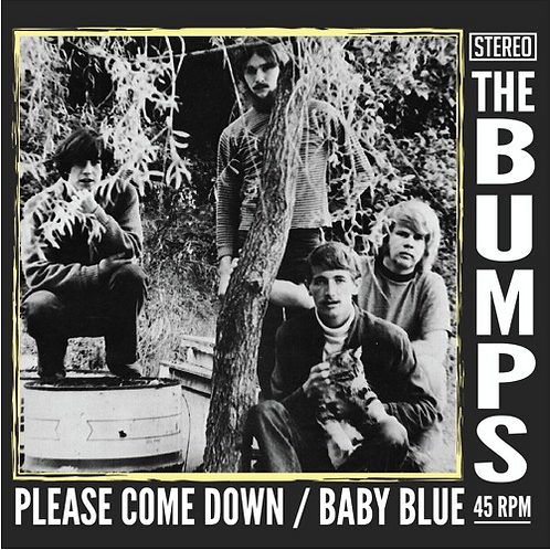 The Bumps –Please Come Down / Baby Blue. 45
