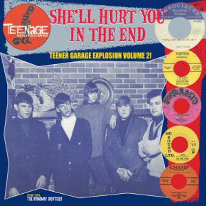 """V/A """"She'll Hurt You In The End"""" LP (Teenage Shutdown/Crypt) LP"""