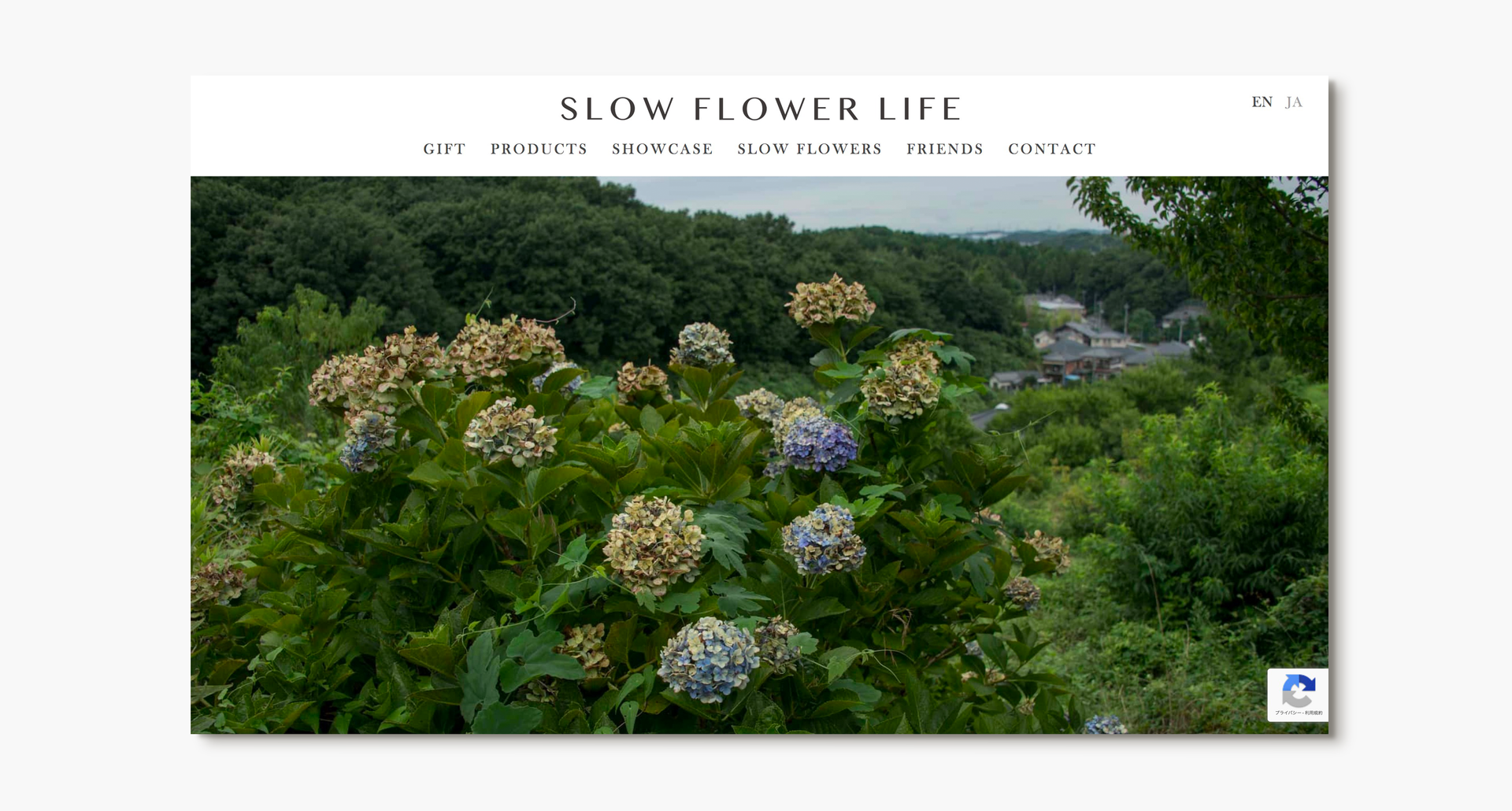 2018 Slow Flower Life