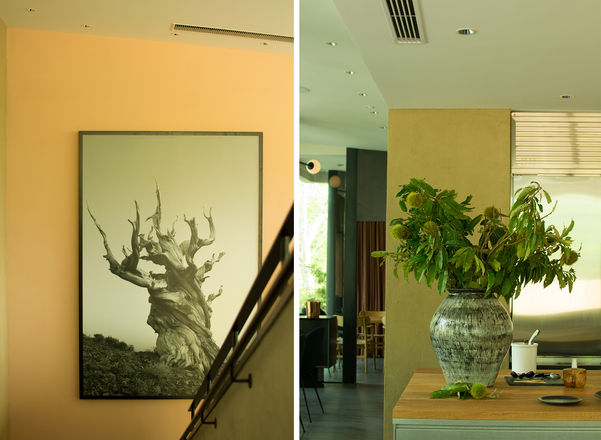 The contrast between East and West design styles can be seen amongst the plant choices.