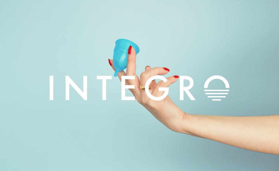 2018 Integro