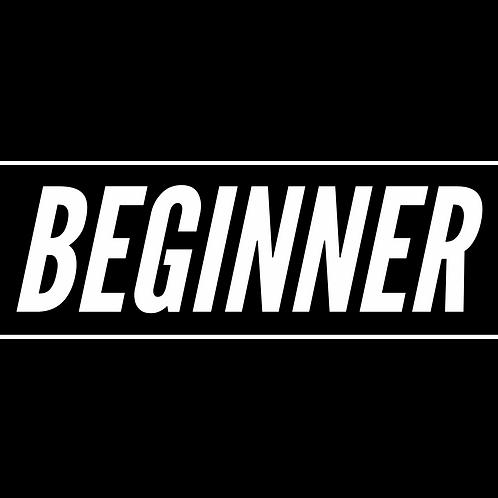 Beginner Fx Trading Course