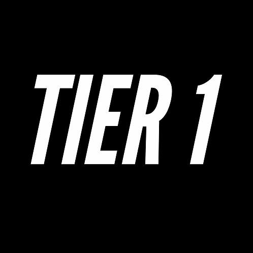TIER 1: Online Forex Coaching (Basic Beginner)
