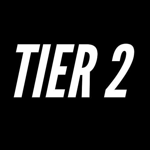TIER 2: Online Forex Coaching (Intermediate-Advanced)