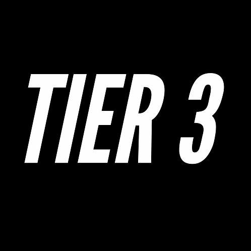 TIER 3: Online Forex Coaching (Beginner-Advanced)