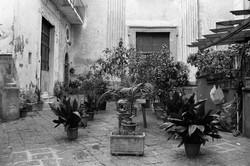 Courtyard, 2017