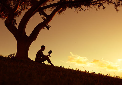 Man reading in the park.jpg