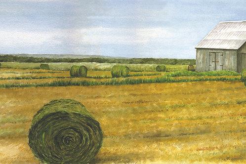 Lewis Wells' Barn