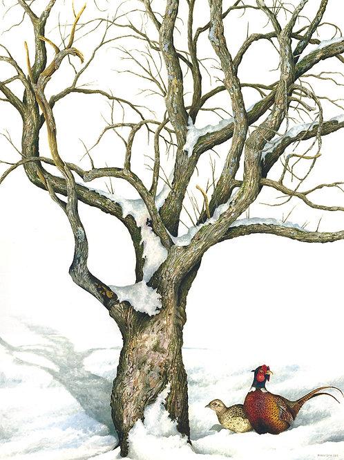 Pheasants & Apple Tree