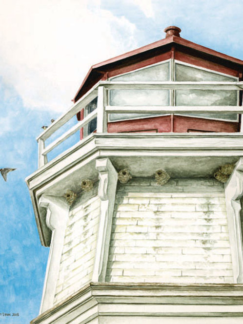 Cliff Swallows & Lighthouse