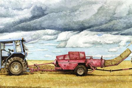 Haying the West Marsh