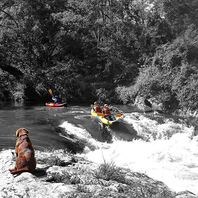 #Juquitiba #canoagem #curso #Caiaque #duck #matadentro #canoar #aventura #adventure #outdoors #outdo