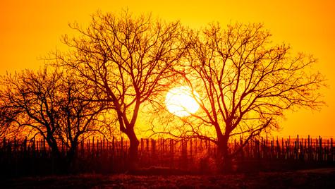 Nad Šardicemi, západ slunce