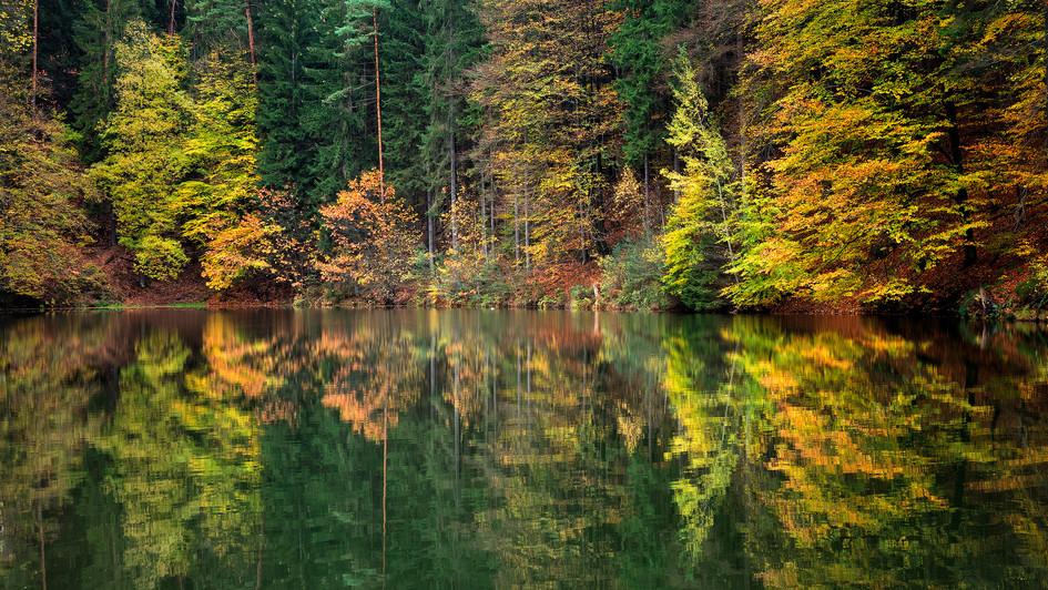 Amselsee, Sasko, podzimní zrcadlení .jpg
