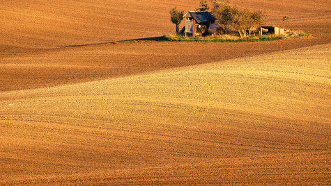 Svatobořice-Misřín, podzim v polích