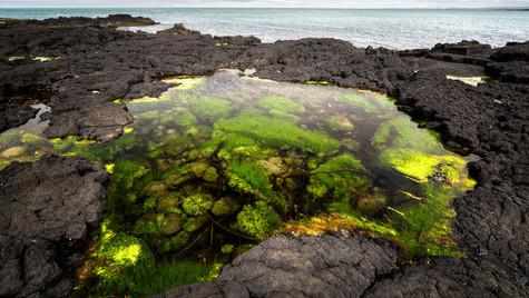 pobřeží u Öndverðarnes