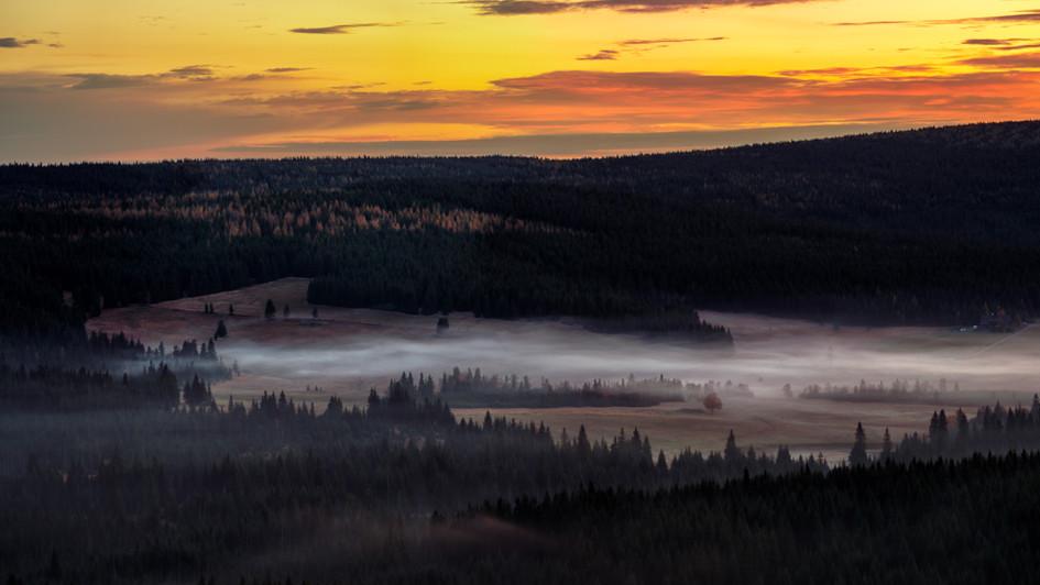 ranní mlha před východem slunce, Pytlác