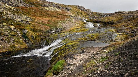 Západní fjordy, poblíž vodopádu Dynjandi, silnice 60