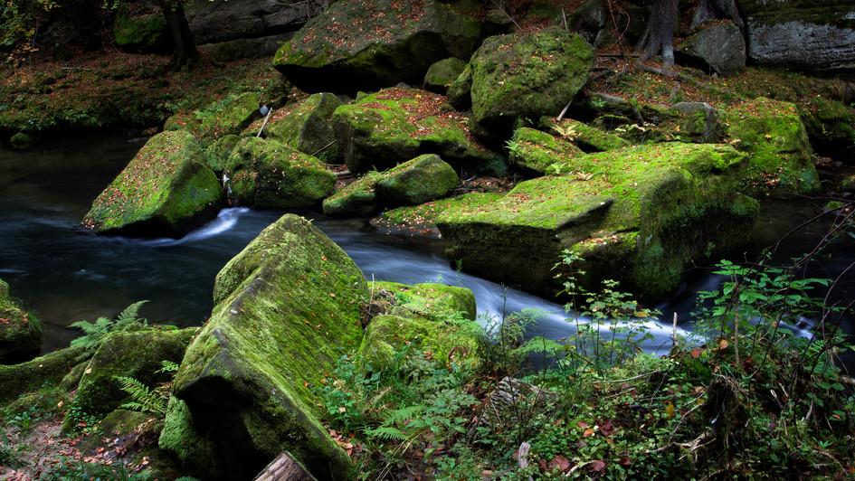 povodí řeky Kamenice