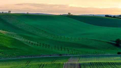Svatobořice-Misřín, západ slunce v polích