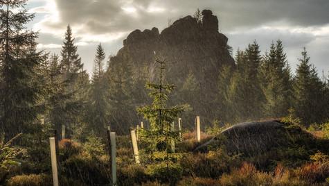 déšť při Pytláckých kamenech, Jizerské h