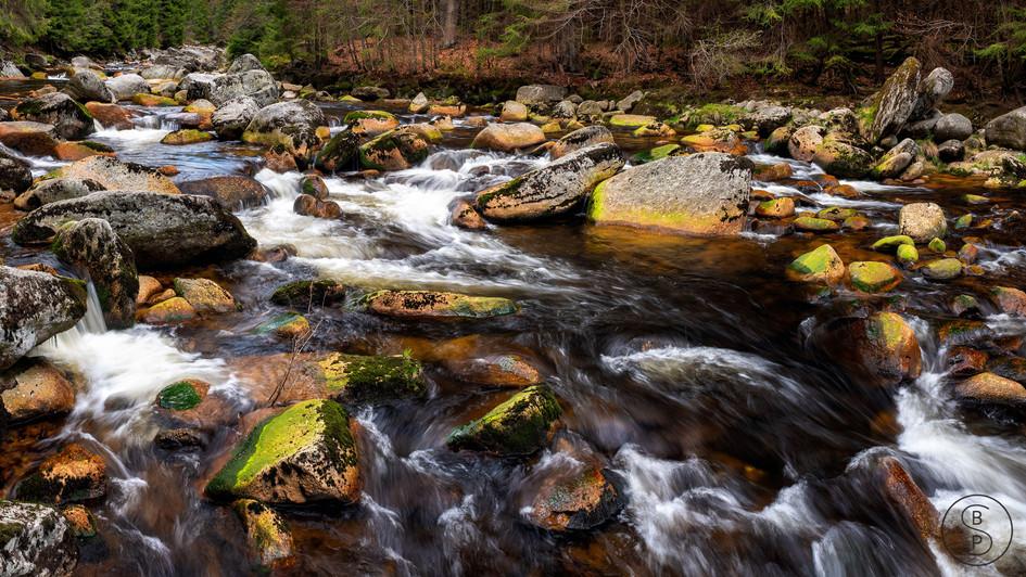 řeka_Jizera,_jaro,_Jizerky.jpg