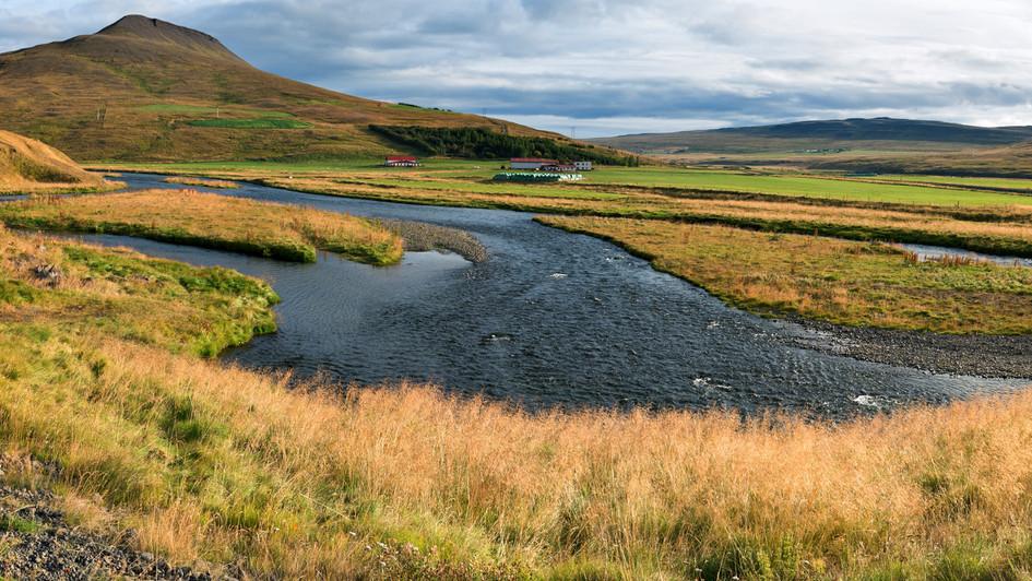 okolí ring road, Severozápadní Island.jpg