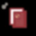 红 认证 高考_画板 1.png