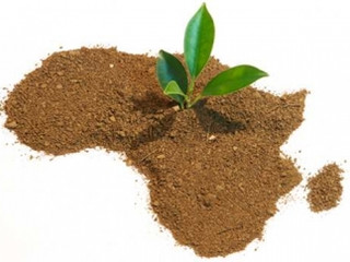 10 Lucrative Business Opportunities in Africa