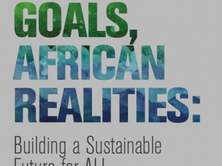 Download: Global Goals, African Realities Report Guide