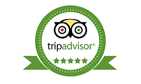 tripadvisor-500x297.png