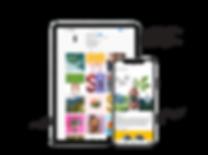 Sparkloop-superfood-factory-social-media