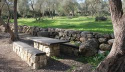 Golany Architects_Olive grove nr Jerusalem, recreation area_01