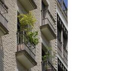 גולני אדריכלים, golany architects