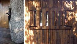 בית מכולות, אדריכלות ירוקה