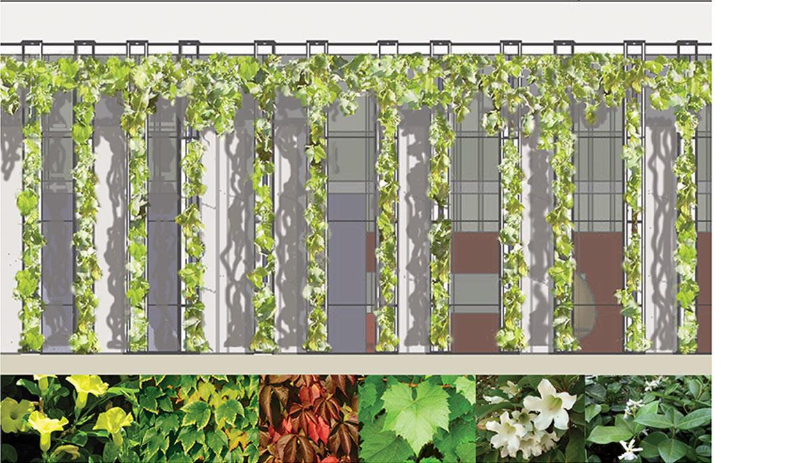 אדריכל למבנה ציבור ובניה ירוקה