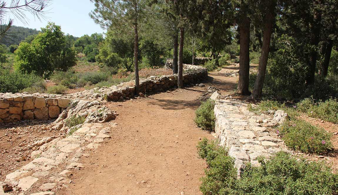 בניה מאבן, אדריכל בהרי ירושלים