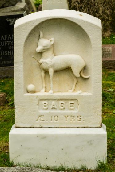 hartsdale pet cemetery-26.jpg
