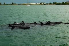 on the water-55.jpg