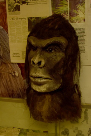 bigfoot discovery museum 8.jpg