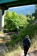 willow creek-56.jpg
