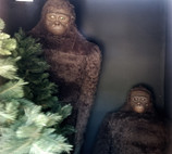 bigfoot discovery museum diorama.jpg