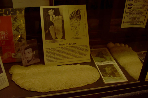 bigfoot discovery museum 9.jpg